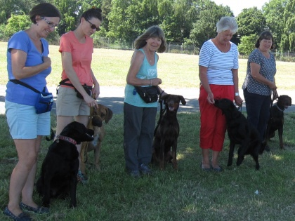 Dog Training Courses Expand at NSC